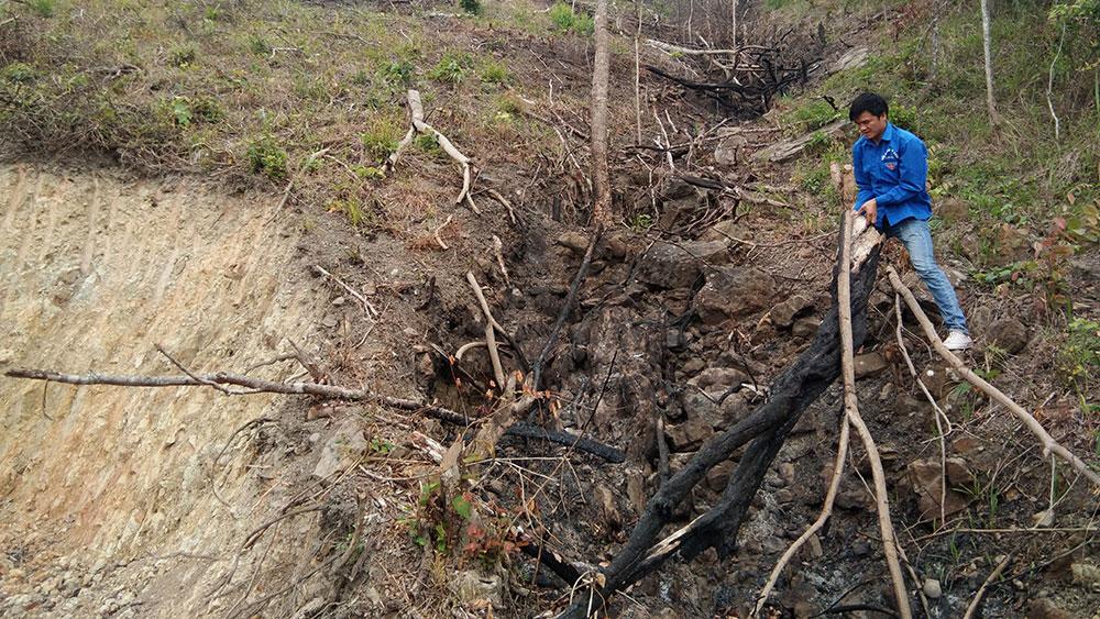 Kịp thời ngăn chặn phá rừng tự nhiên nghèo kiệt, tránh phát sinh hệ lụy